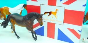 Winner! - Horses Forever